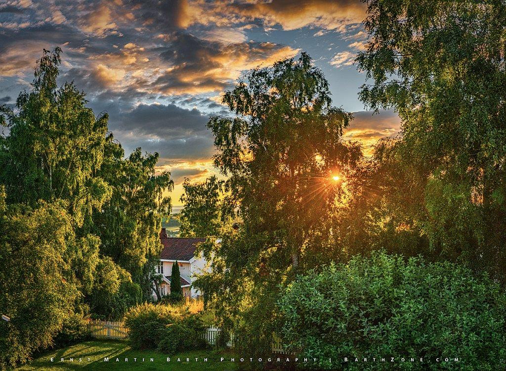 Garden Sunset