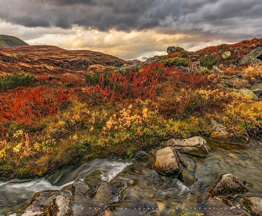 Mountain brook (2)